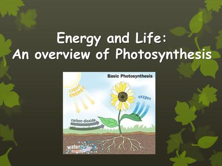 Energy and Life: An overview of Photosynthesis. Objectives Compare the reactants and products of photosynthesis and cellular respiration in terms of energy.