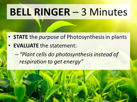 "BELL RINGER – 3 Minutes STATE the purpose of Photosynthesis in plants EVALUATE the statement: – ""Plant cells do photosynthesis instead of respiration to."