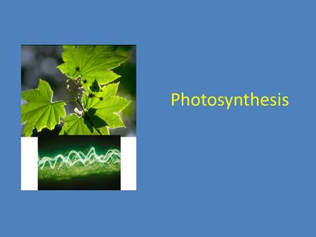 Photosynthesis. Energy is the ability to do work Living things depend on energy. Organisms that make their own food = autotrophs Plants and some other.