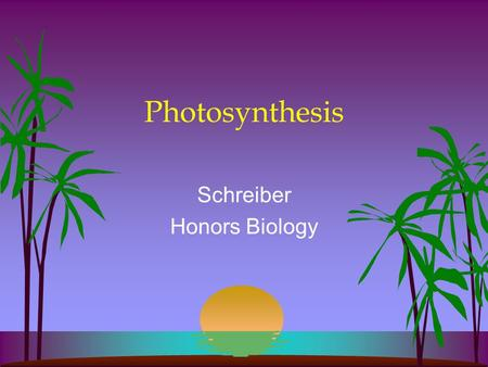 Photosynthesis Schreiber Honors Biology. Who does it?? Photoautotrophs Plants Algae Protists Bacteria **In Plants Primarily Leaves Mesophyll/ Parenchyma.