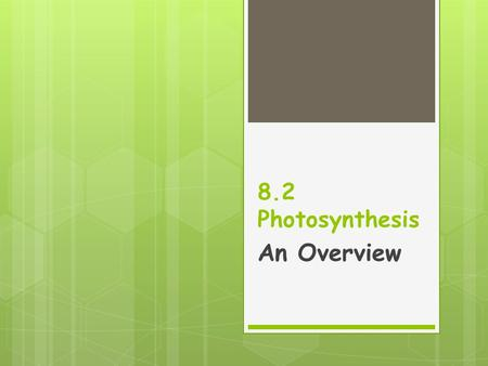8.2 Photosynthesis An Overview. Chlorophyll & Chloroplasts  The wavelengths of the visible spectrum are different colors: red, yellow, green, blue, indigo,