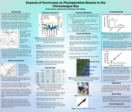 Impacts of Hurricanes on Phytoplankton Blooms in the Chincoteague Bay Trudee Jaeger, Department of Biology, York College Introduction Due to the climate.