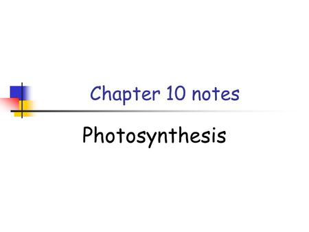 Chapter 10 notes Photosynthesis.