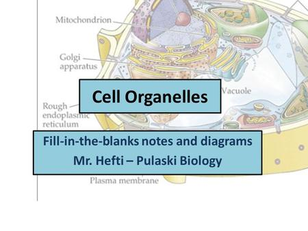 Cell Organelles Fill-in-the-blanks notes and diagrams Mr. Hefti – Pulaski Biology.