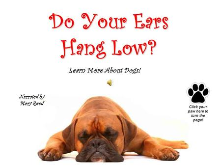 Do Your Ears Hang Low? Narrated by Mary Reed Click your paw here to turn the page! Learn More About Dogs!