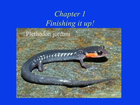 Chapter 1 Finishing it up! Plethodon jordani. Chapter 1 Finishing it up!