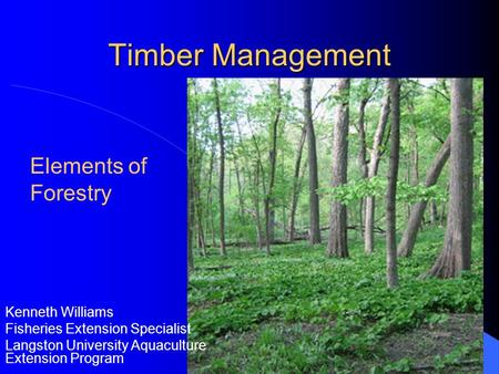 Timber Management Kenneth Williams Fisheries Extension Specialist Langston University Aquaculture Extension Program Elements of Forestry.