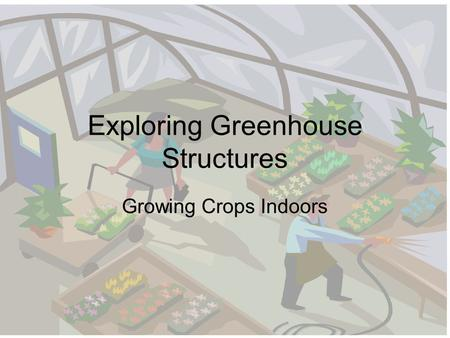 Exploring Greenhouse Structures Growing Crops Indoors.