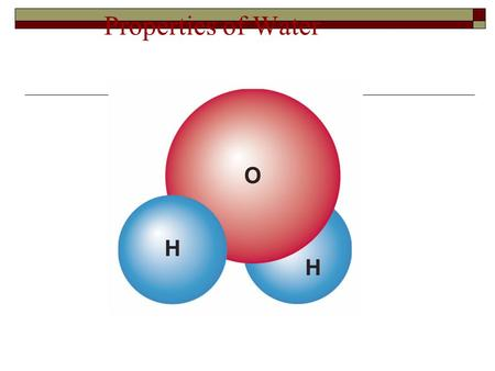 Properties of Water. The Water Molecule A water molecule is polar because there is an uneven distribution of electrons between the oxygen and hydrogen.
