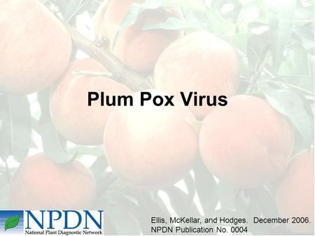 Plum Pox Virus Ellis, McKellar, and Hodges. December 2006. NPDN Publication No. 0004.