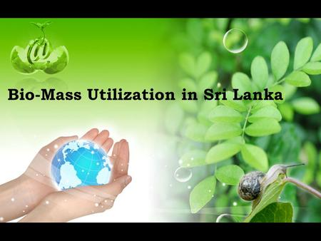Bio-Mass Utilization in Sri Lanka. Technical/Financial Assistance Required for Encouraging Utilization of Bio-Mass in Sri Lanka ► Data Base on Availability.