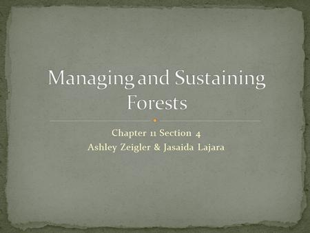 Chapter 11 Section 4 Ashley Zeigler & Jasaida Lajara.