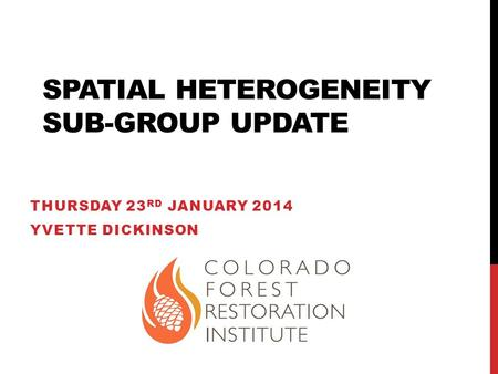 SPATIAL HETEROGENEITY SUB-GROUP UPDATE THURSDAY 23 RD JANUARY 2014 YVETTE DICKINSON.