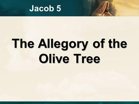 The Allegory of the Olive Tree