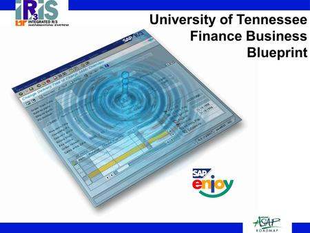 1 University of Tennessee Finance Business Blueprint 1.