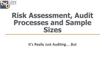 Risk Assessment, Audit Processes and Sample Sizes It's Really Just Auditing…..But.