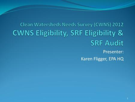 Presenter: Karen Fligger, EPA HQ 1. Session Overview 1) Introduction to CWNS 2) Needs Definitions and Categories 3) Needs Elgibility 4) SRF Eligibility.