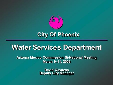 Water Services Department Arizona Mexico Commission Bi-National Meeting March 9-11, 2008 David Cavazos Deputy City Manager Water Services Department Arizona.