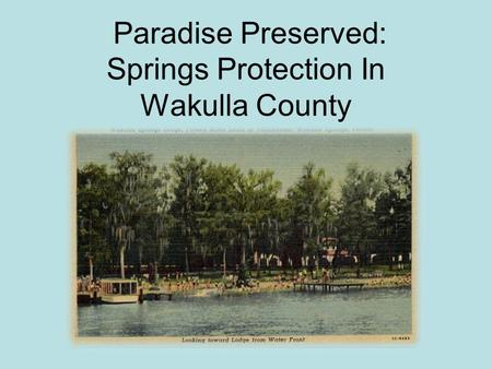 Paradise Preserved: Springs Protection In Wakulla County.