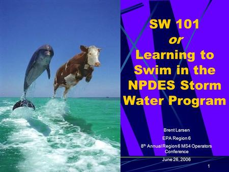 1 SW 101 or Learning to Swim in the NPDES Storm Water Program Brent Larsen EPA Region 6 8 th Annual Region 6 MS4 Operators Conference June 26, 2006.
