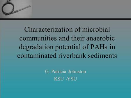 Characterization of microbial communities and their anaerobic degradation potential of PAHs in contaminated riverbank sediments G. Patricia Johnston KSU.