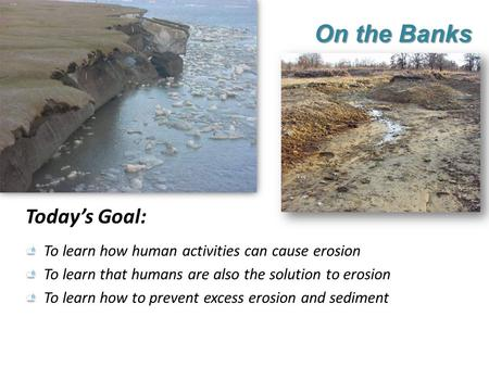 On the Banks Today's Goal: To learn how human activities can cause erosion To learn that humans are also the solution to erosion To learn how to prevent.