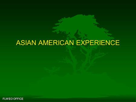 Contemporary asian american experience