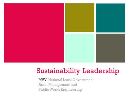 Sustainability Leadership MAV National Local Government Asset Management and Public Works Engineering.
