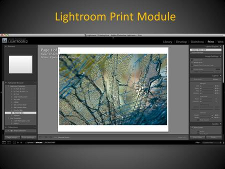 "Lightroom Print Module. Click: Page Setup Lower left panel For most prints, choose ""Maximize Size"""