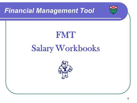 1 Financial Management Tool FMT Salary Workbooks.