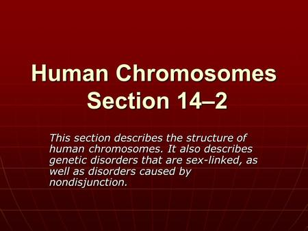 Human Chromosomes Section 14–2