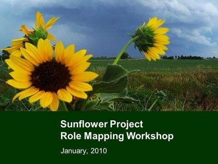 Sunflower Project Role Mapping Workshop January, 2010.