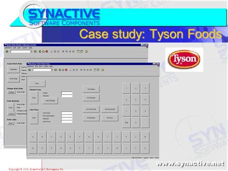 Copyright © 2001, Synactive LLC, Burlingame, CA Case study: Tyson Foods.