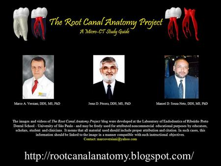 Marco A. Versiani, DDS, MS, PhDJesus D. Pécora, DDS, MS, PhDManoel D. Sousa-Neto, DDS, MS, PhD The images and videos.