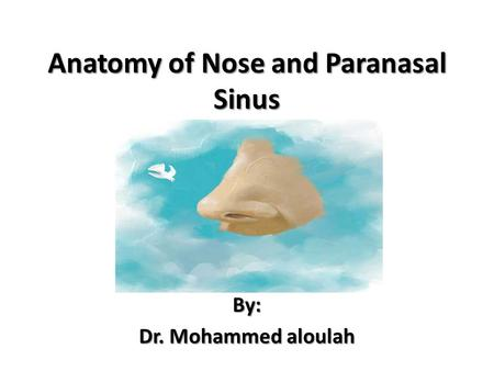 Anatomy of Nose and Paranasal Sinus By: Dr. Mohammed aloulah.