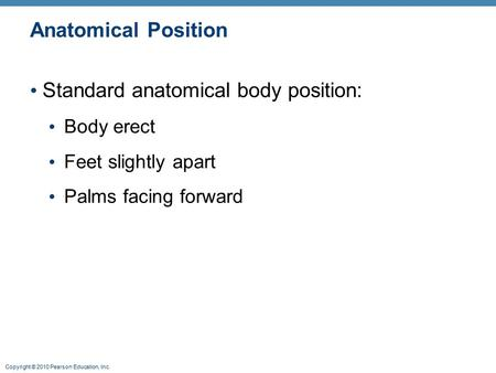 Copyright © 2010 Pearson Education, Inc. Anatomical Position Standard anatomical body position: Body erect Feet slightly apart Palms facing forward.