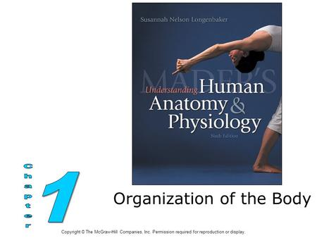 Organization of the Body Copyright © The McGraw-Hill Companies, Inc. Permission required for reproduction or display.