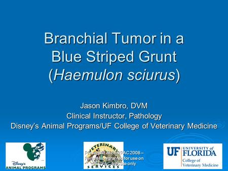 Branchial Tumor in a Blue Striped Grunt (Haemulon sciurus) Jason Kimbro, DVM Clinical Instructor, Pathology Disney's Animal Programs/UF College of Veterinary.