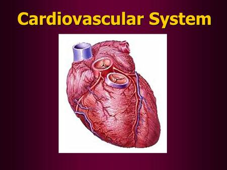 Cardiovascular System. Circulatory Functions: 1.To transport oxygen (O 2 ), nutrients (food), and waste products (like CO 2 ) throughout the body. 2.