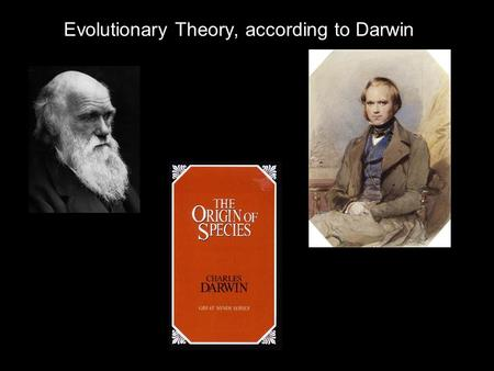 Evolutionary Theory, according to Darwin. Definitions and Components of Darwin's Evolution Definition of Biological Change: Differential Persistence of.