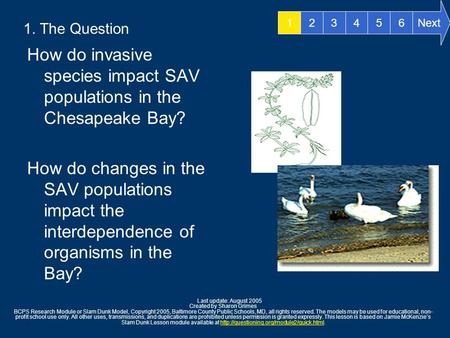 1. The Question How do invasive species impact SAV populations in the Chesapeake Bay? How do changes in the SAV populations impact the interdependence.
