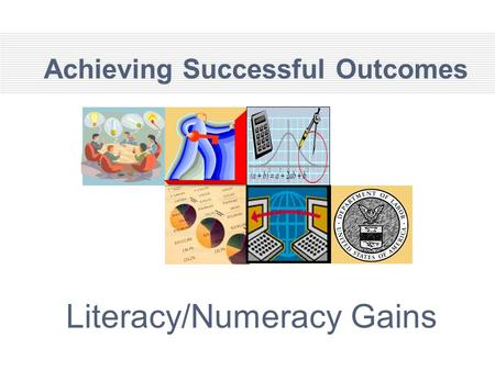 Achieving Successful Outcomes Literacy/Numeracy Gains.