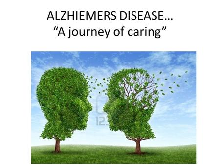 "ALZHIEMERS DISEASE… ""A journey of caring"". ALZHEIMERS DISEASE ALZHEIMERS DISEASE IS THE MOST COMMON CAUSE OF DEMENTIA IN ELDERLY ALZHEIMER'S IS PREDICTED."
