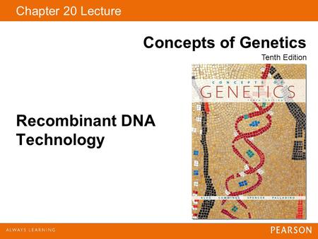 Chapter 20 Lecture Concepts of Genetics Tenth Edition Recombinant DNA Technology.