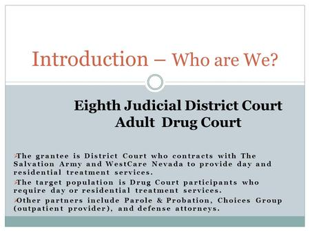 Eighth Judicial District Court Adult Drug Court  The grantee is District Court who contracts with The Salvation Army and WestCare Nevada to provide day.