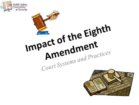 Impact of the Eighth Amendment Court Systems and Practices.