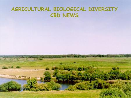 AGRICULTURAL BIOLOGICAL DIVERSITY CBD NEWS. SBSTTA 10 Recommendations Bangkok, February 2005 Elżbieta Martyniuk National Focal Point POLAND.