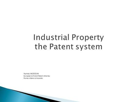 Industrial Property the Patent system
