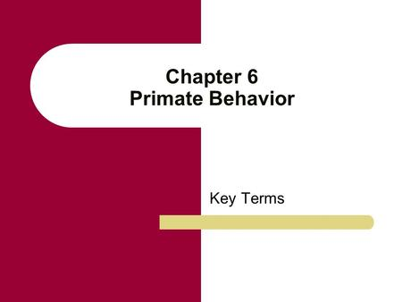 Chapter 6 Primate Behavior Key Terms. Social structure The composition, size, and sex ratio of a group of animals. Social structures, in part, are the.