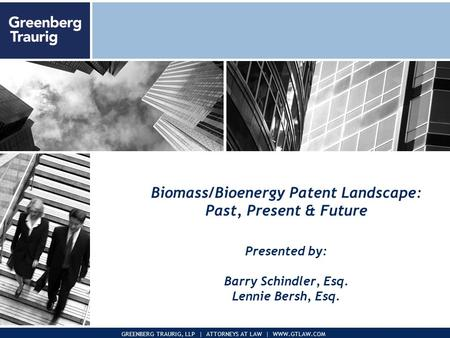 November 2005Presentation to Pegasus Corp. 1 GREENBERG TRAURIG, LLP | ATTORNEYS AT LAW | WWW.GTLAW.COM Biomass/Bioenergy Patent Landscape: Past, Present.